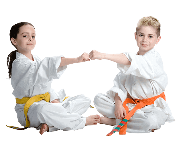 Martial Arts Lessons for Kids in Zephyrhills FL - Kids Greeting Happy Footer Banner