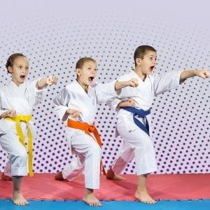 Martial Arts Lessons for Kids in Zephyrhills FL - Punching Focus Kids Sync